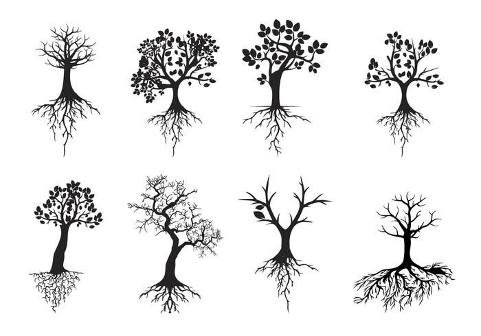 Set Of Free Black Silhouettes Tree With Roots Vector Tree With Roots Isolated White Background In 2020 Tree Roots Tattoo Roots Tattoo Tree Silhouette Tattoo