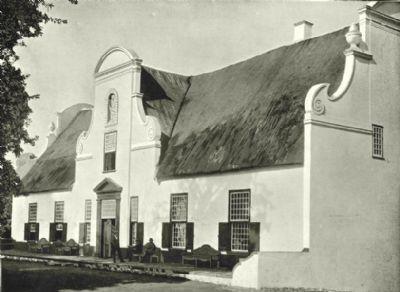 SOUTH AFRICA: Government Wine farm, Konstanz, antique print, 1899