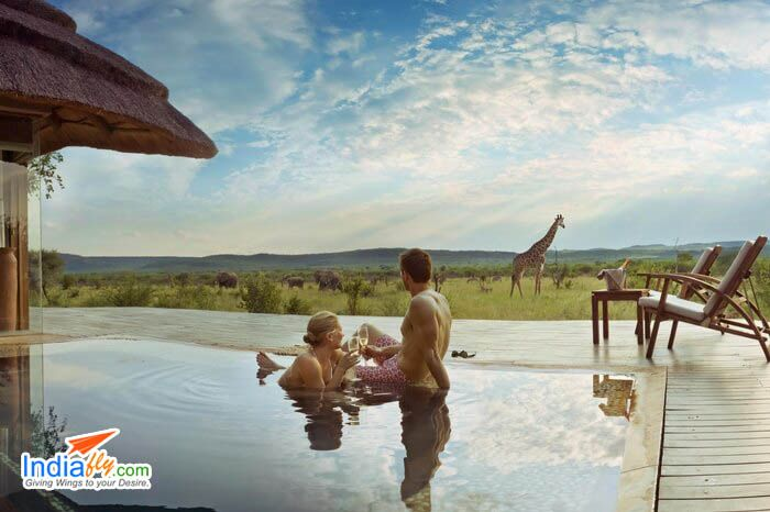 Top Safari Honeymoon Destinations, Experiences, & Resorts In The World # http://www.indiafly.com/