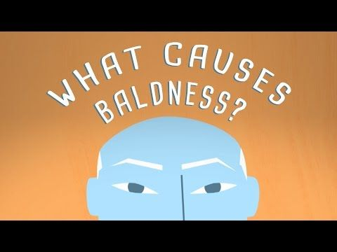 What do Charles Darwin, Michael Jordan, and Yoda have in  common? They, like many other historical and fictive individuals, are  bald. Scientists have long pondered, why do some people lose their hair,  and how can we bring it back? Sarthak Sinha explores the basics of baldness.