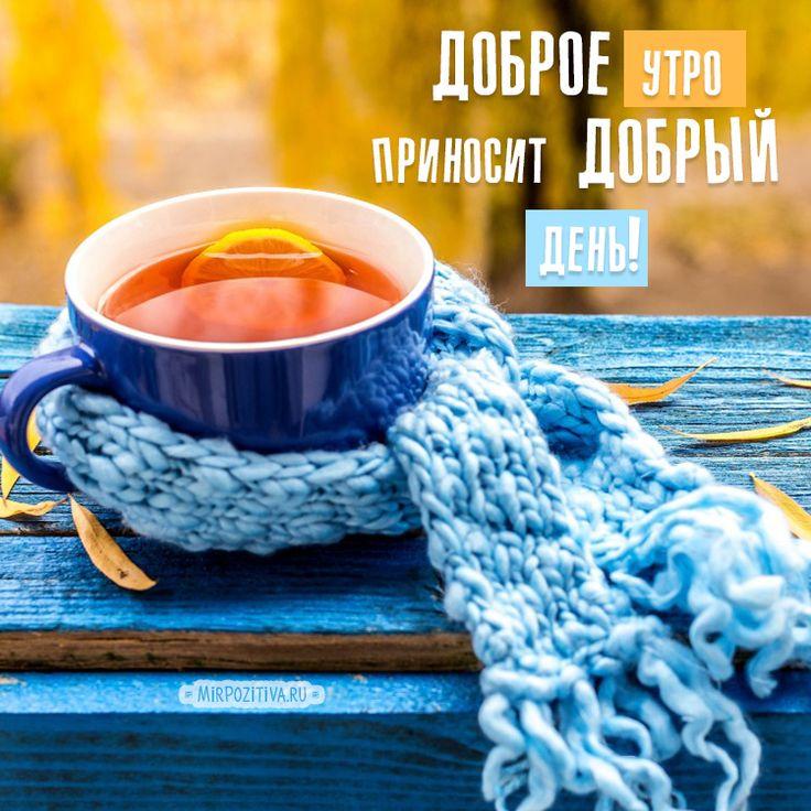 Мир позитива картинки с добрым утром осень