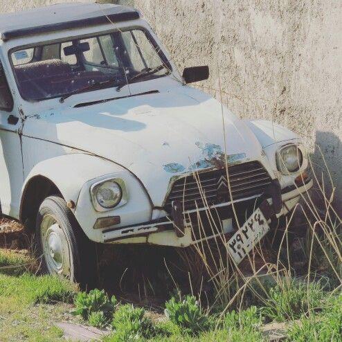 Cute vintage old car in backyard