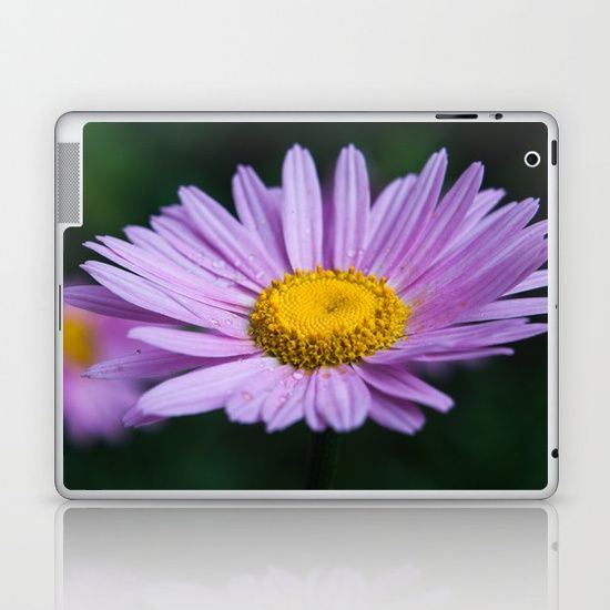 Violet daisy Laptop & iPad Skin society6, gifts, shopping, buy, sell, digital, color, nature, floral, flower, daisy, violet, lilac, purple, yellow, single, one, drops, dew, gadgets, electronics, iphone, cases, skins, sleeves, ipad