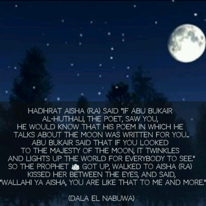 Quotes About Love: 355 Best Islam♥Pearls Of Wisdom Images On Pinterest