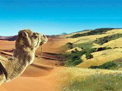 Viajes a Marruecos - Turismo y vacaciones – Oficina Nacional Marroquí de Turismo