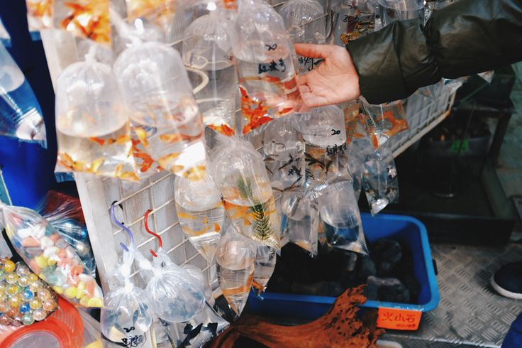 Goldfish Market in Hong Kong