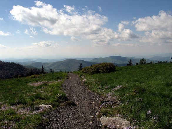 Appalachian Trail – East Coast  It's impossible to mention hiking and the United States without mentioning the Appalachian Trail (AT).  A trail that stretches over 2100 miles and passes through 14 states, from Georgia to Maine, is one of the best and most varied trails in the country.