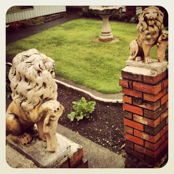 Two of the kajillion lions in my 'hood.