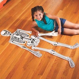 Skeleton Floor Puzzle Skeletal System Bones