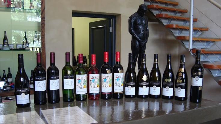 Wine Tasting in Tulbagh - South Africa   Saronsberg Wine Estate