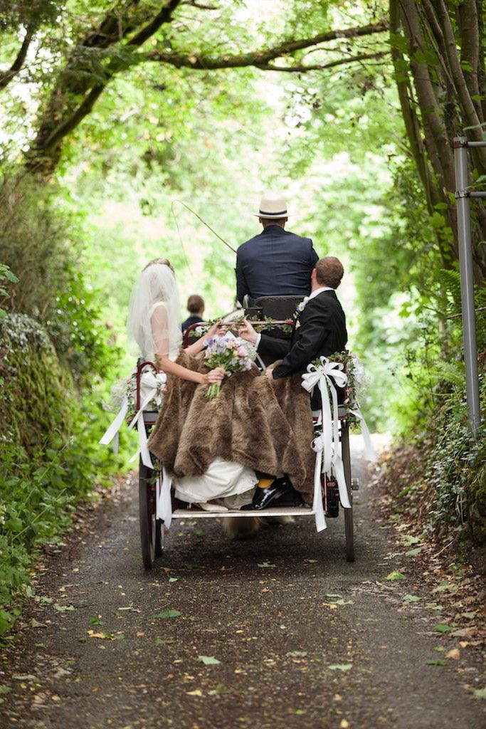 Traditional horse and trap wedding transport www.thetraditionaltentcompany.co.uk