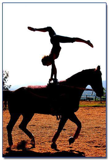 Google Image Result for http://blackburnarch.files.wordpress.com/2010/03/equestrian-vaulting-ava.jpg