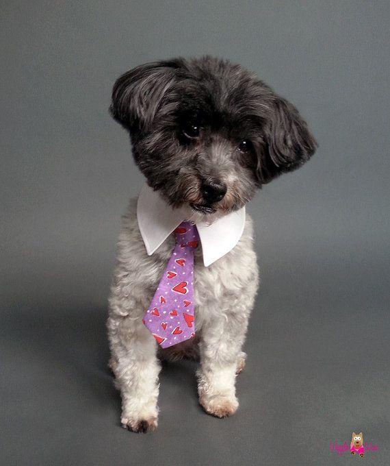 Dog Black And Purple Plaid Ties