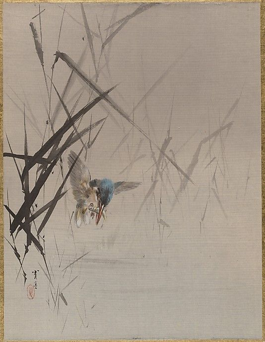 Bird Catching Fish Among Reeds Watanabe Seitei (Japanese, 1851–1918) Period: Meiji period (1868–1912) Culture: Japan Medium: Album leaf; ink and color on silk Dimensions: 14 1/8 x 10 3/4 in. (35.9 x 27.3 cm) Classification: Painting