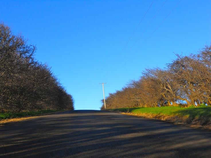 A country lane.