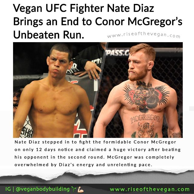 Vegan UFC Fighter Nate Diaz stepped in to fight the formidable Conor McGregor on only 12 days notice and claimed a impressive victory after beating his opponent in the second round. McGregor was unable to keep up with Diaz and was completely overwhelmed by Diaz's energy and unrelenting pace. McGregor had been in training for months leading up to this fight as he was originally going to fight Rafael dos Anjos who withdrew at short notice with a foot injury.Diaz stepped in to replace dos…