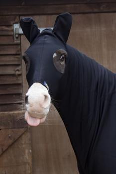 Snuggy Hoods - TURN OUT HOOD ZIP & EARS - BLACK £80 Snuggy Hoods