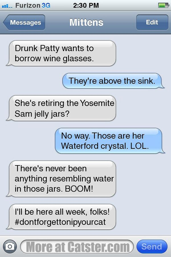 Texts From Mittens: The National Drink Wine Day Edition | Catster  Click to read more!