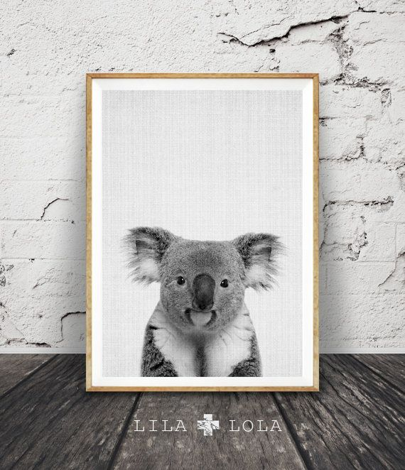 Koala Print, Black and White Animal Wall Art, Koala Bear, Printable Instant Download, Grey and White Nursery Decor, Australian Gift