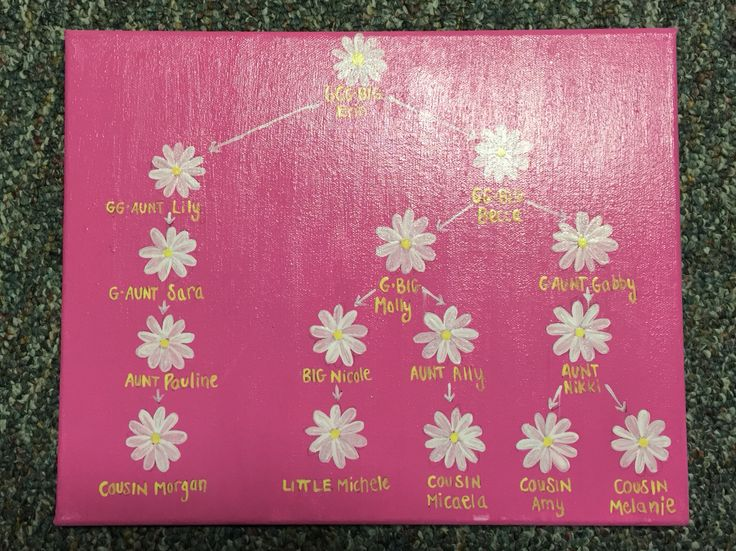 Painted canvas sorority family tree. Alpha Xi delta. Flowers. Daisy. Sorority. Crafted. DIY. Pink.