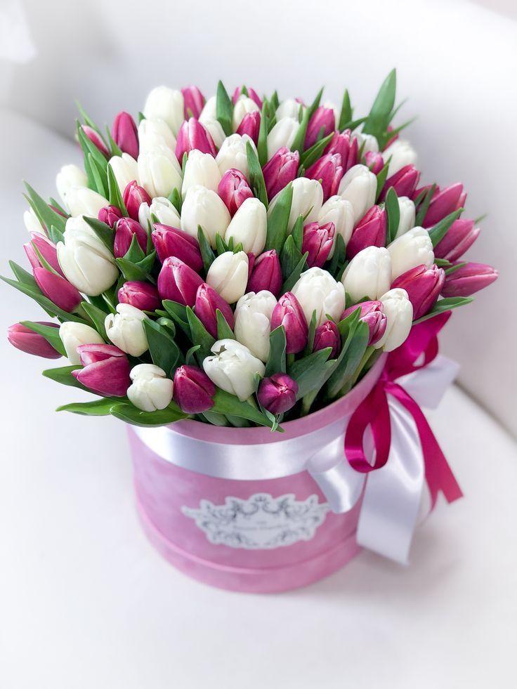 Картинки цветы красивые букеты тюльпанов для открытки