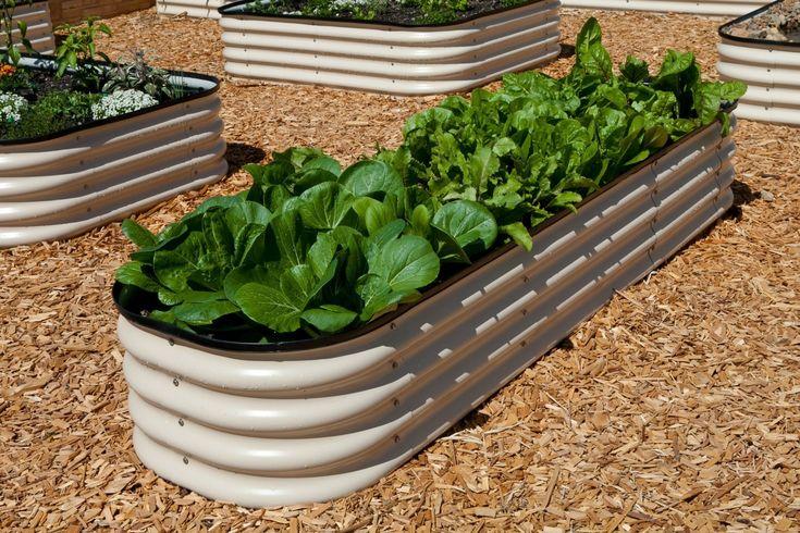 RaisedBeds.com - Modular Metal Trough Garden Bed, $209.95 (http://raisedbeds.com/modular-metal-trough-garden-bed/)