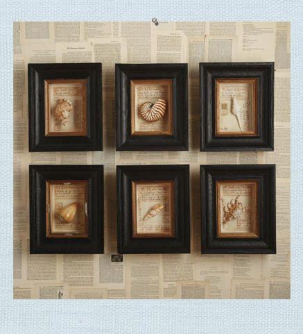 Shell Framed Shadow Box Wall Art History And The Beach