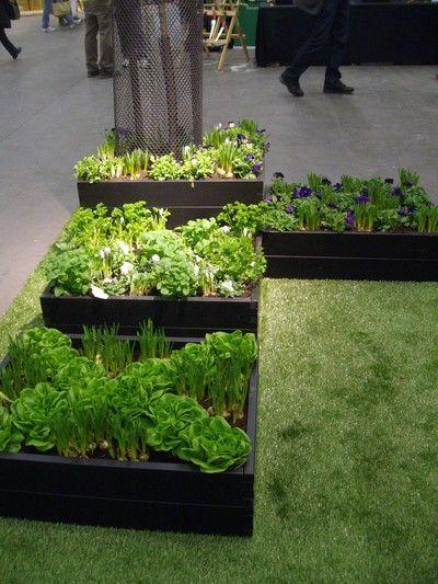 trädgårdsland pallkragar - Sök på Google