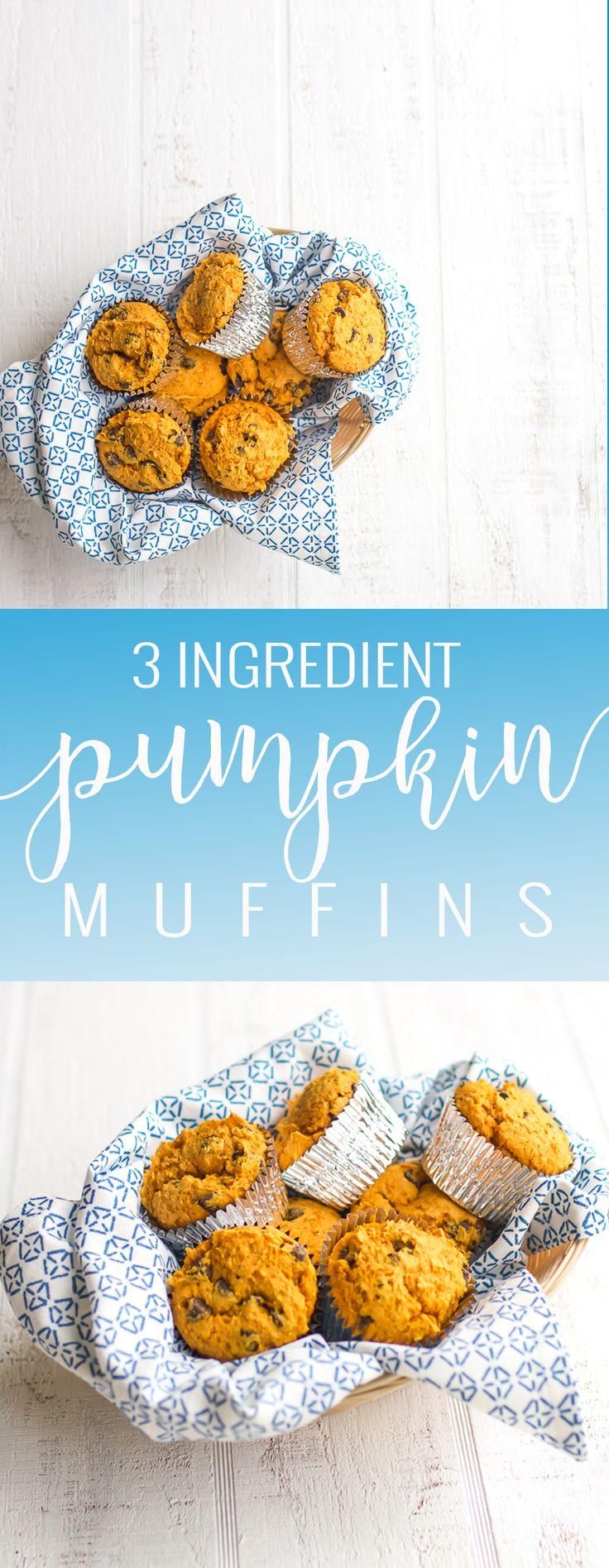 The Easiest Pumpkin Muffins   homemade pumpkin muffin recipe   pumpkin breakfast recipes   fall breakfast recipes   pumpkin recipe ideas   pumpkin dessert recipes   homemade muffin recipes   easy pumpkin recipes    Oh So Delicioso
