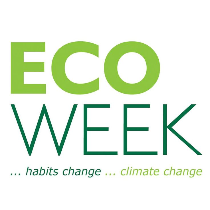 'If Others Care, Then You Too Will Care', Ecoweek's Head E. Messinas Says