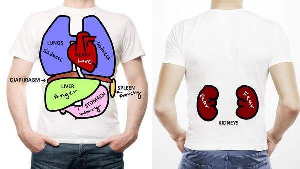 Na antiga medicina grega e na medicina tradicional chinesa, os órgãos internos são considerados sedes das emoções e seriam influenciados por estas.