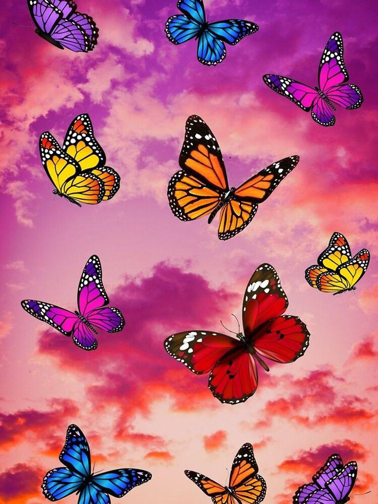 'Butterflies in sky' iPhone Case by yoacat in 2020 ...