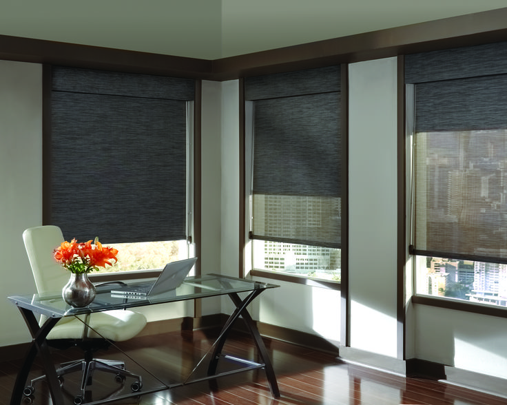The newest trend in window treatments are designer screens and designer  roller shades. Easy to