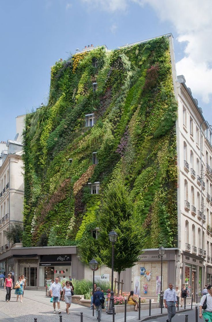 Livewall green wall system make conferences more comfortable - The Inventor Of Green Walls Patrick Blanc Has Created The Oasis Of Aboukir Green Wall With Waves Of 7600 Plants Unveiled At Paris Design Week