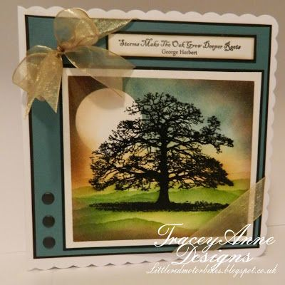 Tracey Anne Designs: Sheena Douglas Stamps - A little bit sketchy