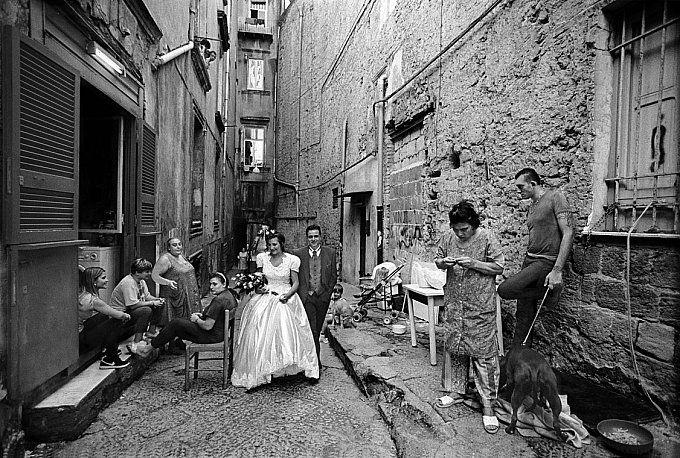 Risultati immagini per francesco cito neapolitan wedding story