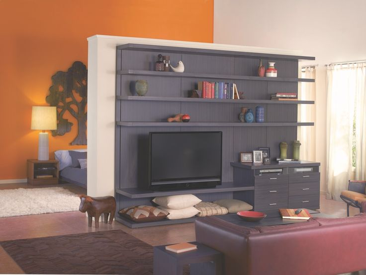 media center doubling as room divider | storage solutions