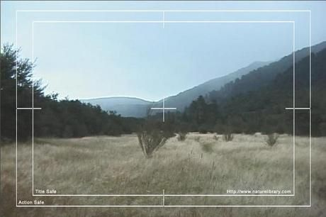 Royalty Free Stock Footage: New Zealand Valley: NL00018