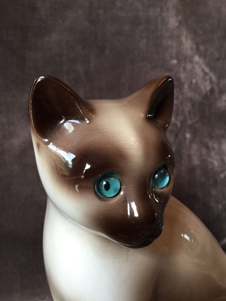 A personal favorite from my Etsy shop https://www.etsy.com/ca/listing/542719200/large-vintage-siamese-cat-figurine-japan