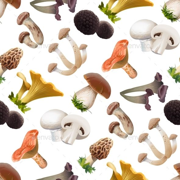 Seamless Pattern of Mushrooms by vectorpocket Vector seamless pattern of various kind of edible mushrooms. Realistic style