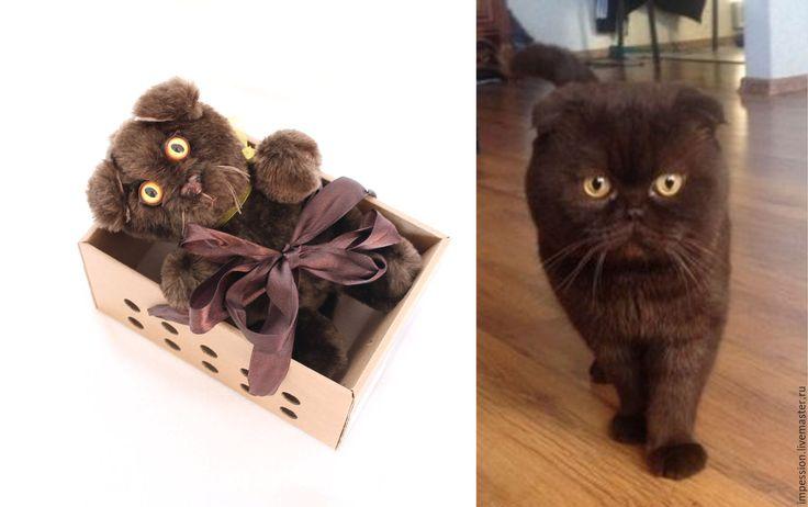Чудесный шотландский вислоухий плюшевый котенок шоколадного окраса Ручная работа