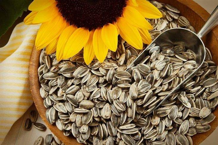 14 Proven Benefits Of Sunflower Seed Sunflowerseed Benefitofsunflowerseed Be Sunflower Seeds Benefits Seeds Benefits Chia Seeds Benefits