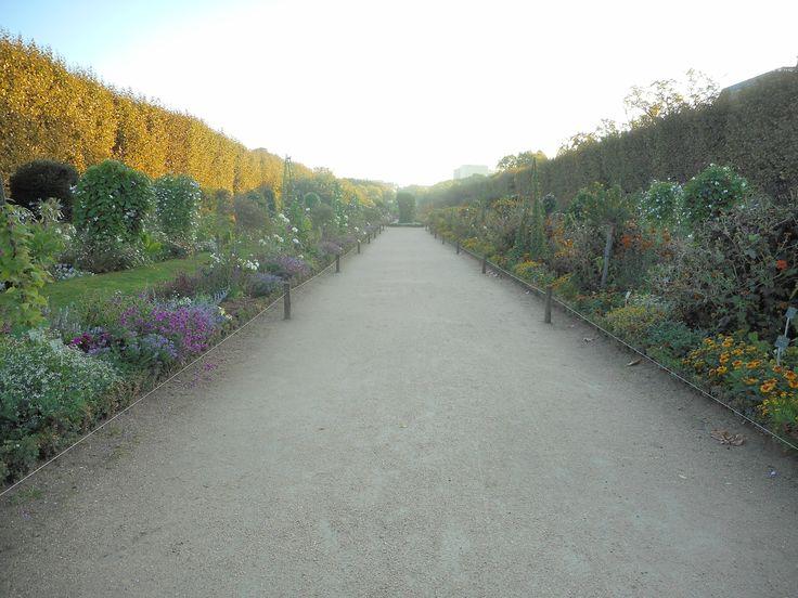 Jardin des Plantes à Paris, Île-de-France