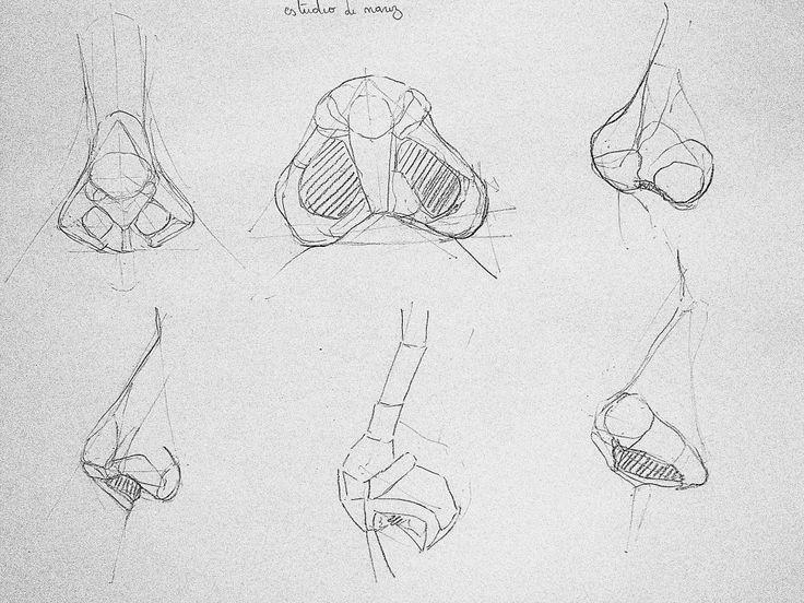 estudios sobre el dibujo - Nico Ovalle Garcés