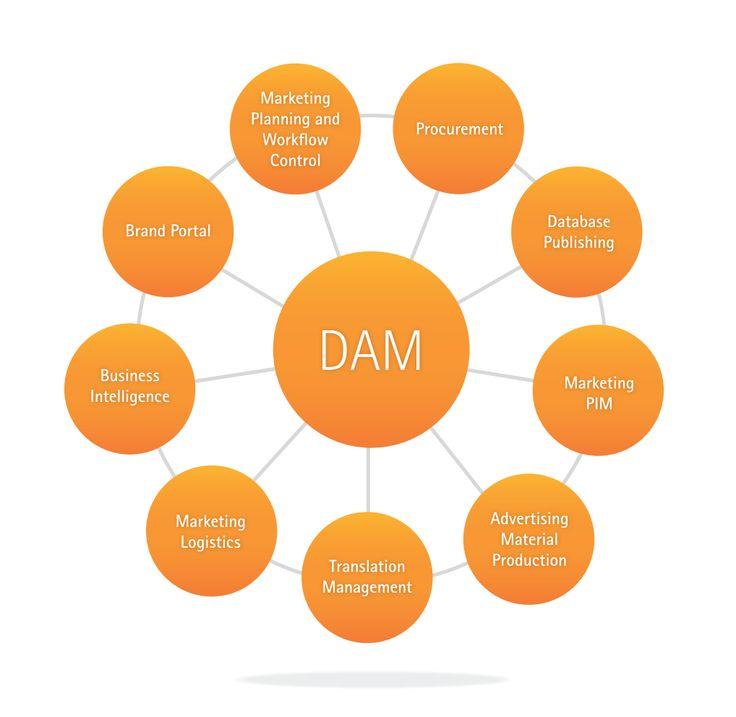 85 best DAM Systems images on Pinterest Digital asset management - digital assets management resume