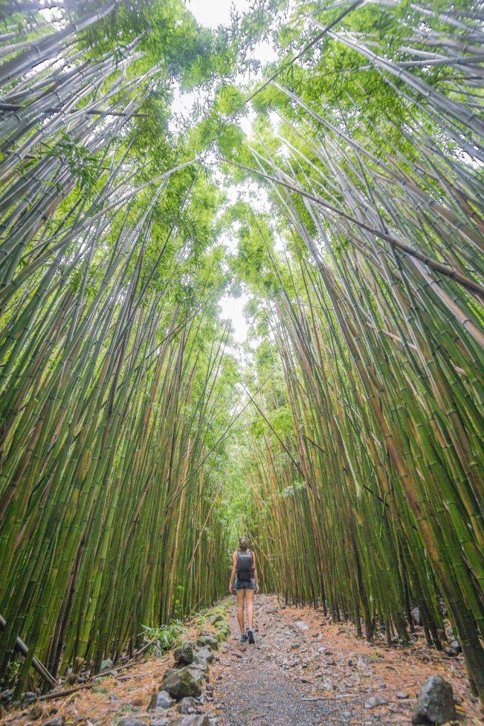 Secrets of the Road to Hana in Maui