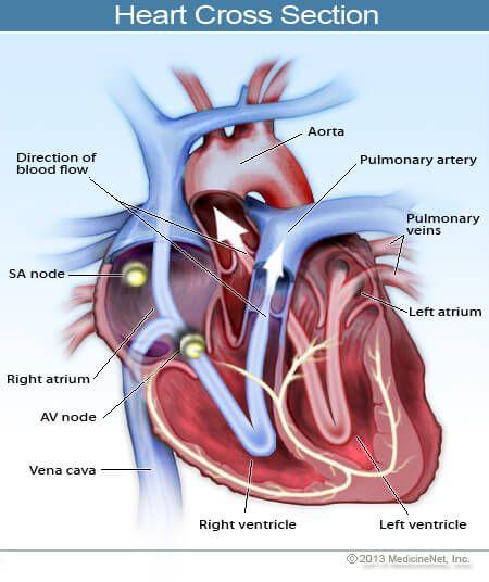 Congestive Heart Failure Symptoms, Stages, Life Expectancy