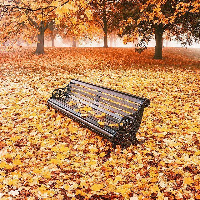 Hyde Park ...