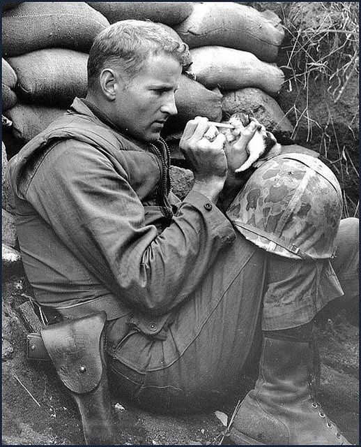 """Photo taken in Korea 1953. The kitten, Miss Hap was only 2 wks old. The  kitten was rescued by Marine Sergeant Frank Praytor.     In 2010, Praytor wrote, """"Miss Hap was weaned on meat out of C rations and grew into a big girl who thought I was her father. When I left Korea, I left her in the care of another Marine. When I returned in '55, she was alive and well.    At 83, I'm still saving orphans. Have two cats, Molly and Max. They never leave the house."""""""