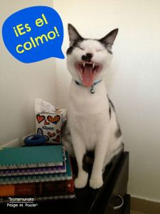"""""""Word Wednesday: el colmo""""  """"El colmo"""" is a common expression in Colombian Spanish. It is used to mean """"unthinkable,"""" """"unfair,"""" or """"inconceivable."""""""